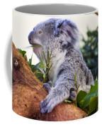 Koala Eating In A Tree Coffee Mug