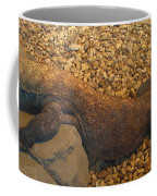 Komodo Coffee Mug