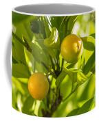 Kumquats Coffee Mug