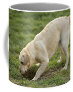 Labrador Checking Hole Coffee Mug