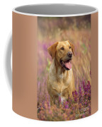 Labrador Dog Coffee Mug