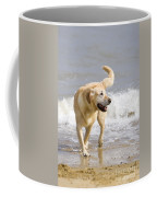 Labrador Dog Playing On Beach Coffee Mug