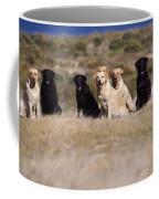 Labrador Dogs Waiting For Orders Coffee Mug