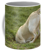 Labrador In Hole Coffee Mug