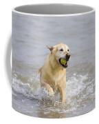 Labrador-mix Retrieving Ball Coffee Mug