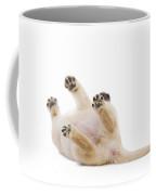 Labrador Puppy Rolling Over Coffee Mug