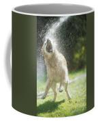 Labrador Retriever And Hose Coffee Mug