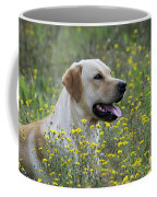 Labrador Retriever Dog Coffee Mug
