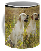Labrador Retriever Dogs Coffee Mug