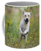 Labrador Running Coffee Mug