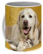 Labrador With Cat Coffee Mug