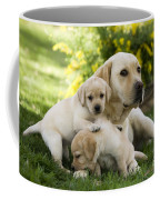 Labrador With Young Puppies Coffee Mug