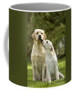 Labradors, Adult And Young Coffee Mug