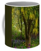Laburnum Tree In Bloom Coffee Mug