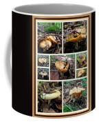 Lactarius Torminosus - Yellow Mushrooms Coffee Mug