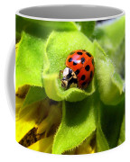 Ladybug And Sunflower Coffee Mug