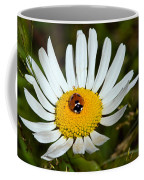 Lady Bug Bulls Eye  Coffee Mug