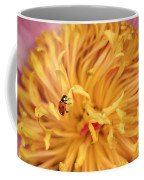 Lady Bug Coffee Mug by Darren Fisher