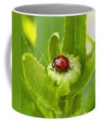 Lady Bug In The Garden Coffee Mug