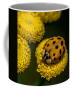 Lady Bug Coffee Mug