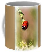 Lady Bug Coffee Mug