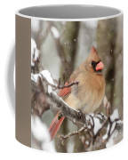 Lady In The Snow Coffee Mug