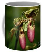 Lady Slipper Orchid Twins Coffee Mug