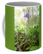Lady Spencer's Bluebell Coffee Mug