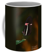 Lady With Wings Coffee Mug