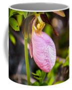 Ladyslipper  Wildflower Coffee Mug