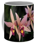 Laelia Santa Barbara Sunset Coffee Mug