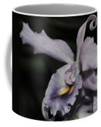 Laeliocattleya Blue Boy 1 Of 2 Coffee Mug