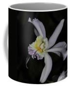 Laeliocattleya Jacki Stidham Coffee Mug