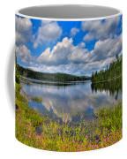 Lake Abanakee In Indian Lake New York Coffee Mug by David Patterson