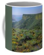 1a5801-e-lake Abert And Abert Rim V Coffee Mug