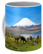 Lake Chungara Chilean Andes Coffee Mug by Kurt Van Wagner