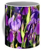 Lake Country Irises Coffee Mug