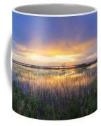 Lake Jackson Sebring Florida Panorama Coffee Mug