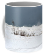 Lake Michigan Ice Coffee Mug