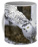 Landing Of The Snowy Owl Where Are You Harry Potter Coffee Mug