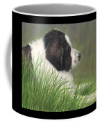 Landseer Newfoundland Dog In Grass Pets Animal Art Coffee Mug
