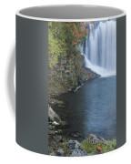 Lanesboro Dam 12 Coffee Mug