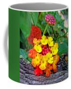 Lantana Flowers 2 Coffee Mug