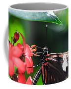Laparus Doris Butterfly Coffee Mug