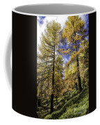 Larch Pines Coffee Mug