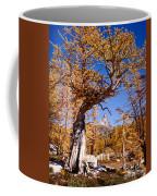 Larch Tree Frames Prusik Peak Coffee Mug