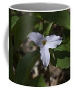 Large-flower Trillium Dspf277 Coffee Mug