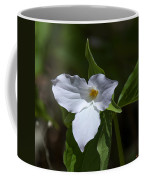 Large-flower Trillium Dspf279 Coffee Mug