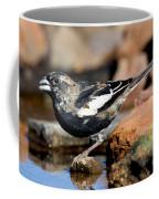 Lark Bunting Calamospiza Melanocorys Coffee Mug