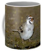 Lark Sparrow Coffee Mug